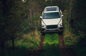 على الطرق الوعرة Bentley Bentayga V8 - الصورة 3