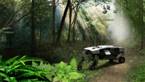 2 TIGER Concept in Forest